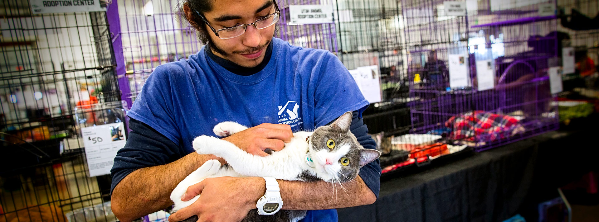 Man in blue shirt cradling white and gray kitten in his arms