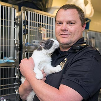 Animal  control officer holding a gray and white cat in a shelter