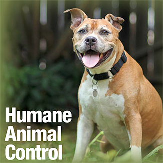 Cover of the Humane Animal Control Manual showing a smiling pit-bull-type dog