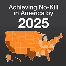 Achieving No-Kill in America by 2025