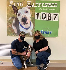 Couple wearing black masks kneeling with dog between them in front of shelter banner