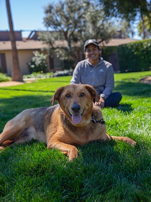 Brown dog lying in grass with woman wearing gray jacket and baseball cap sitting behind