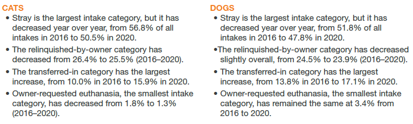 Cats vs. Dogs intake