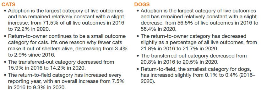 Cats vs. Dogs live outcomes
