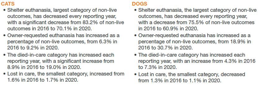 Cats vs. Dogs euthanasia