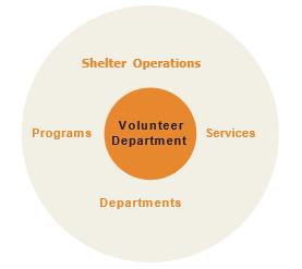 Volunteer Circle Chart