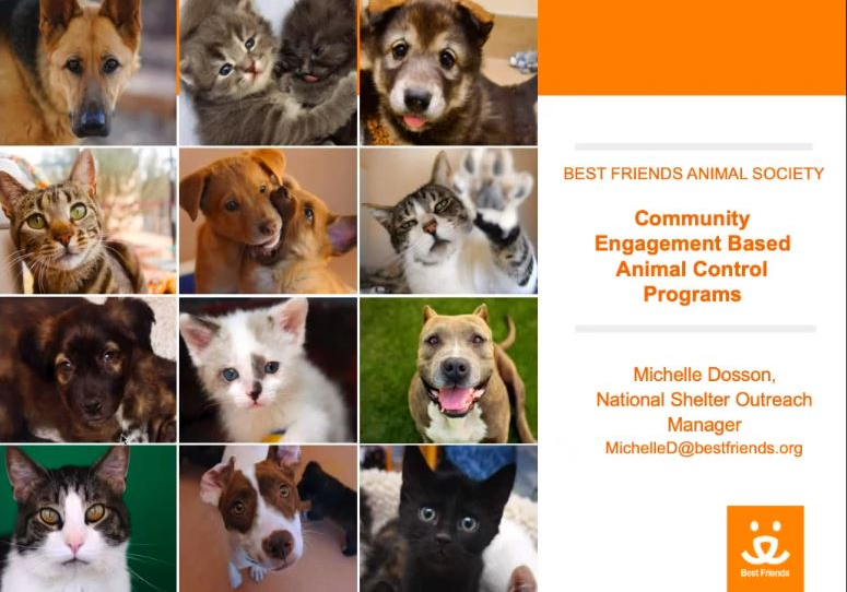 "View of ""Community Engagement Based Animal Control Programs"" webinar"