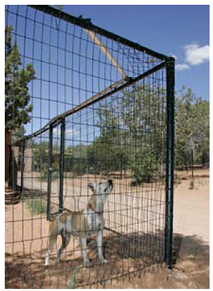 Coyote-roller fence
