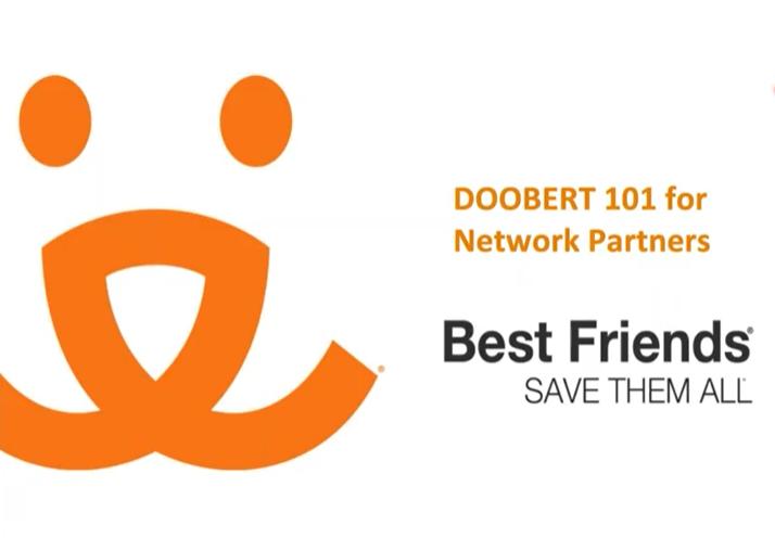 """View of """"Do You Doobert?"""" webinar"""