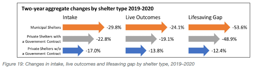 Changes in intake, live outcomes and lifesaving gap by shelter type, 2019-2020