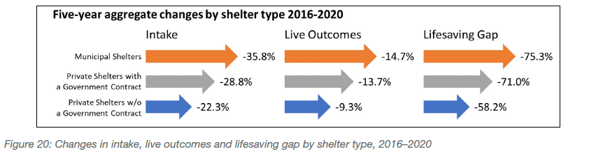 Changes in intake, live outcomes and lifesaving gap by shelter type, 2016-2020