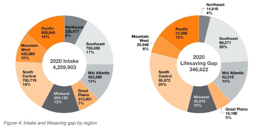 Intake and lifesaving gap by region