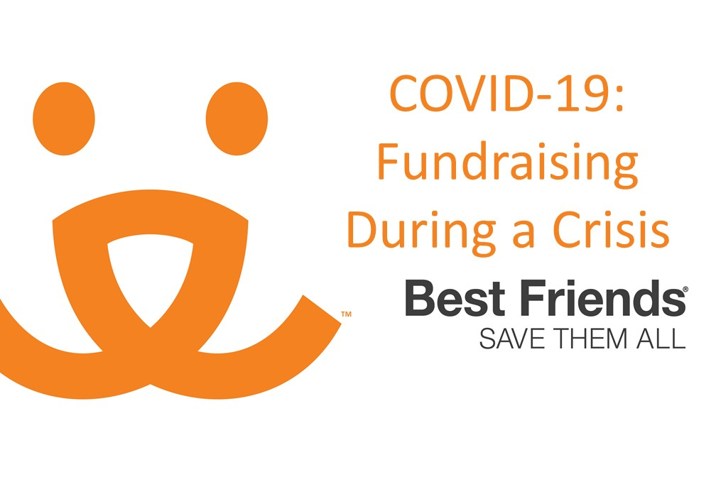 "View of ""COVID-19 Fundraising During a Crisis"" webinar"