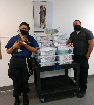 Two shelter staff members one holding a kitten standing next to a cart of kitten kits