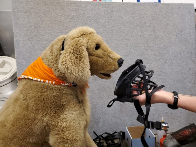 Muzzle with treat inside being offered to a plush dog for training