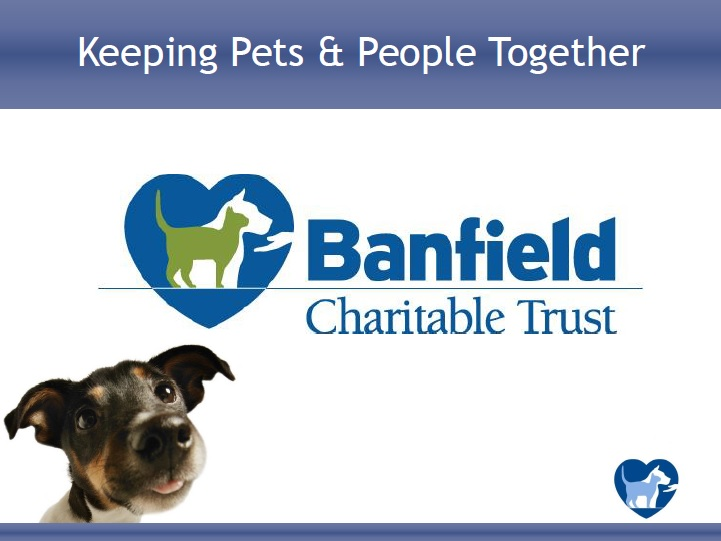 "A view of the ""Obtaining a Banfield Charitable Trust Grant to Keep Pets in Their Homes and Out of Your Shelter"" webinar"