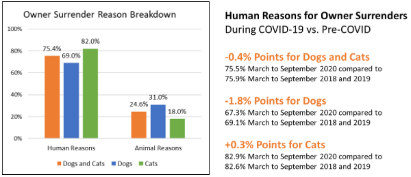 Owner Surrender Reason Graph and Text