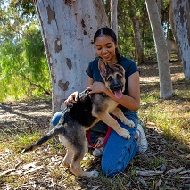 Woman in dark shirt and jeans squatting in front of a tree and hugging a German shepherd puppy