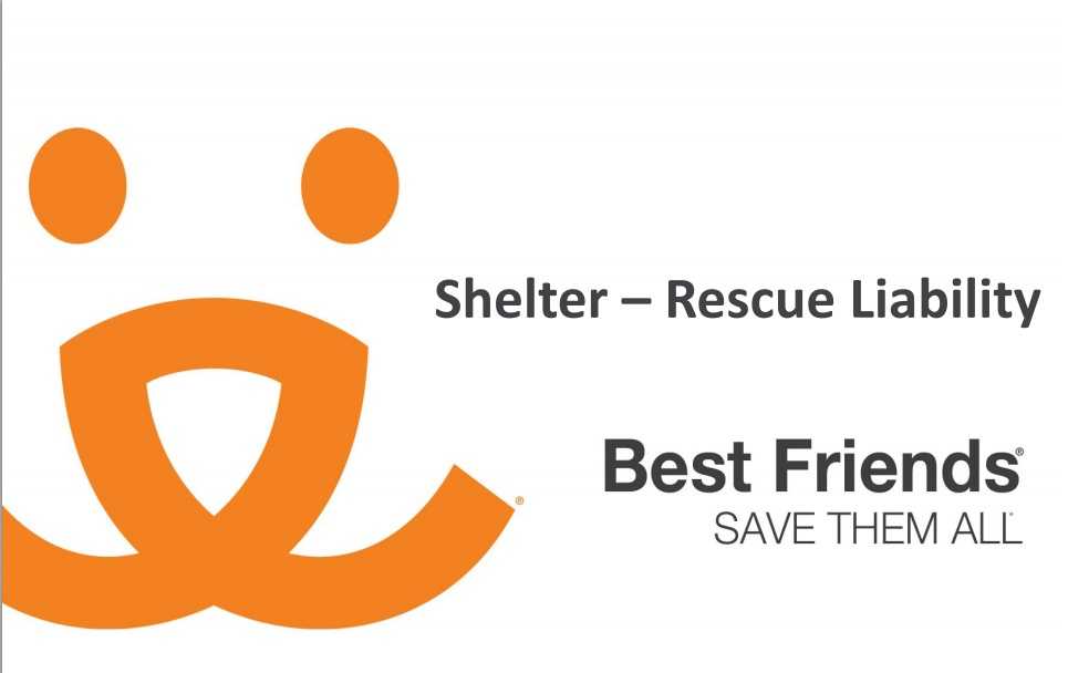 "A view of ""Shelter and rescue group liability"" webinar"