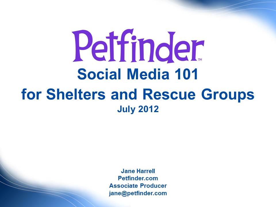 "A view of the ""Social Media 101 for Shelters and Rescue Groups"" webinar"