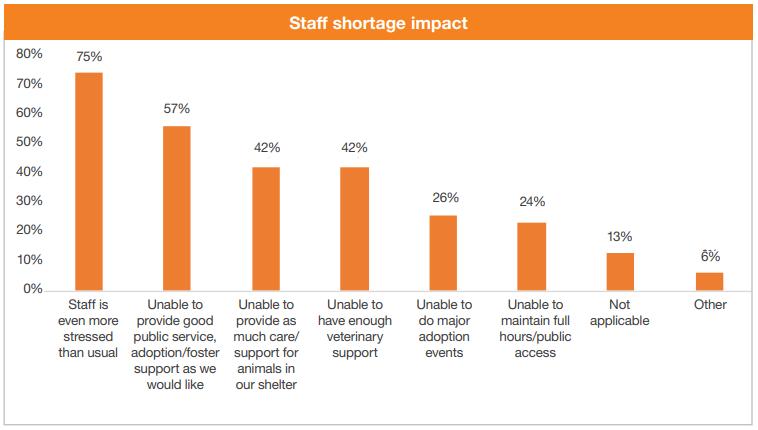 Staffing shortage impact chart