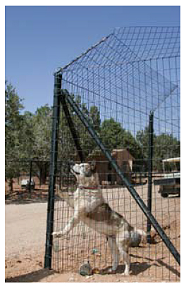 Top-angling fence