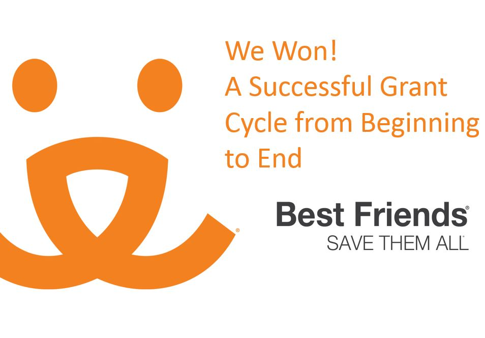 "View of ""We Won! A successful grant cycle from beginning to end"" webinar"