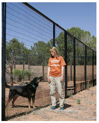 Wire-Mesh Fencing