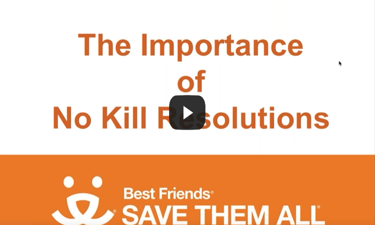 "View of ""no kill resolutions"" webinar"