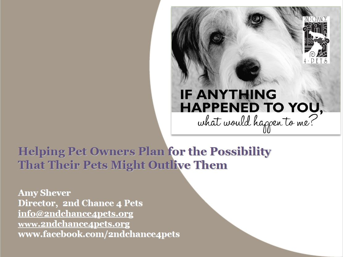 "View of ""Lifetime care for pets"" webinar"