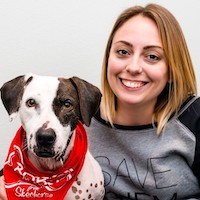Kristan McCormick in a Save Them All sweatshirt pictured with a brown and white mixed breed dog wearing a bandana and being a good boy