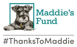 Thanks to Maddie's logo