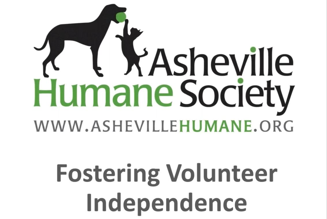 Volunteer Independence