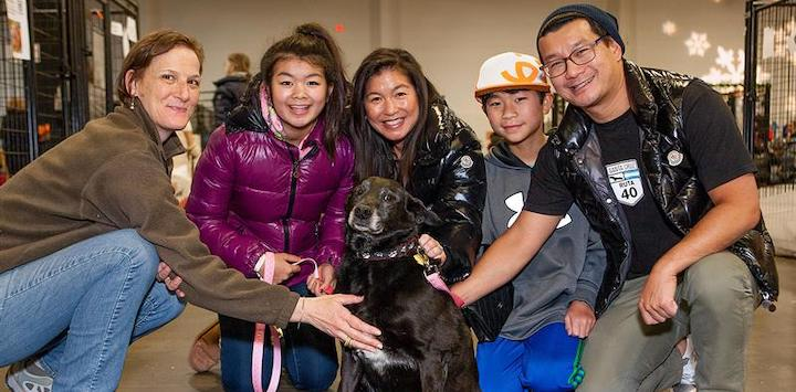 A family very happy with a black senior dog