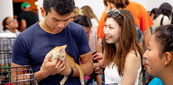 A woman looking at a man holding a kitten during an adoption event