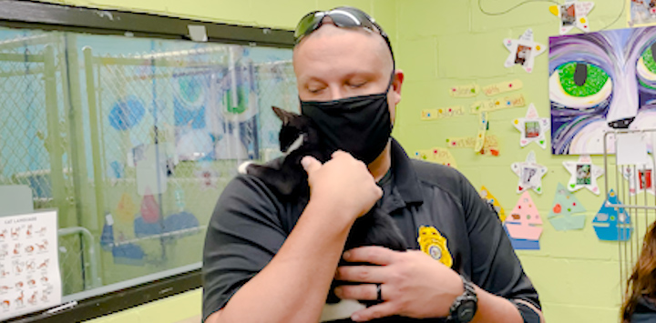 Man in a black mask with sunglasses on his head holding a black and white cat