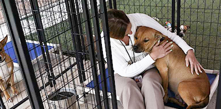 A woman sits in a kennel with her arms wrapped around a dog