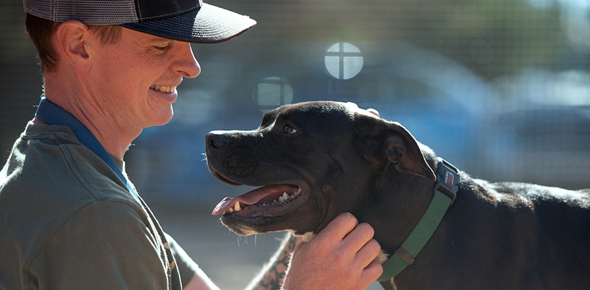 A profile of a man wearing a baseball-style hat, smiling and looking at a black Labrador type dog wearing a green collar