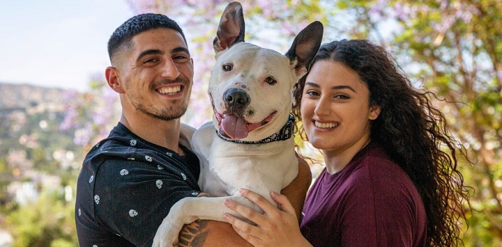Man and woman holding white pit bull type dog between them