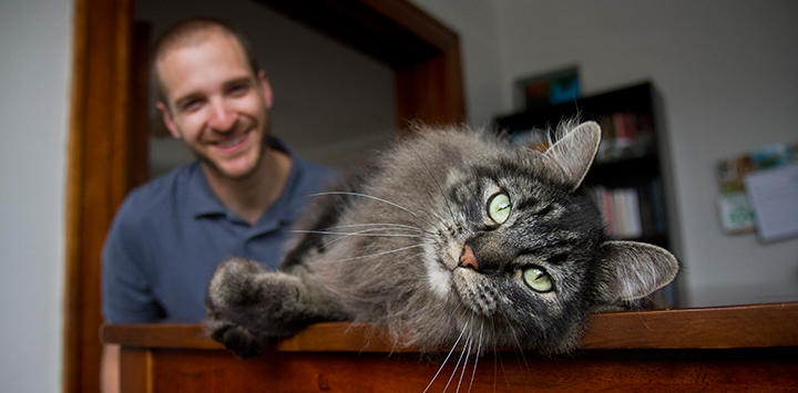 Resources for your cat's health, behavior, care, and socialization.