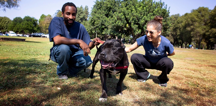 Couple in blue shirts squatting in grass with black pit bull type dog between them