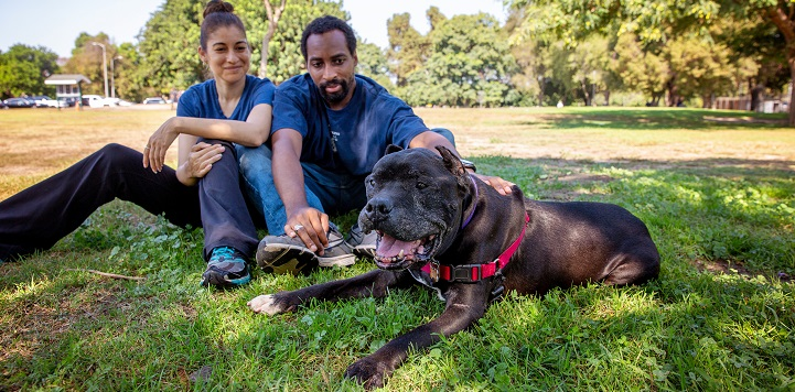 Couple sitting in the grass behind a brown brindle pit bull type dog