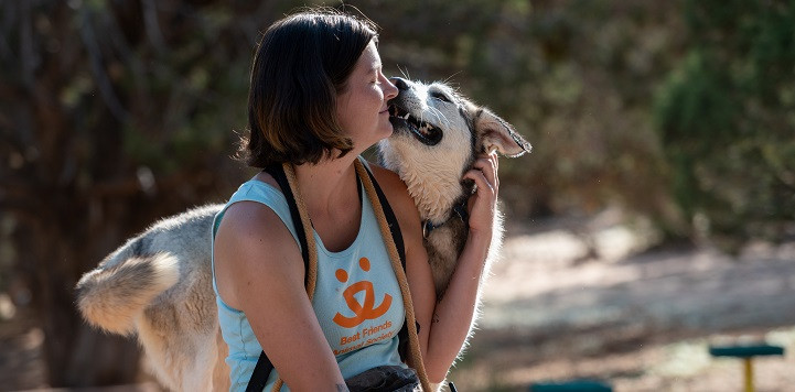 Husky dog standing behind seated woman in tank top sniffing her face
