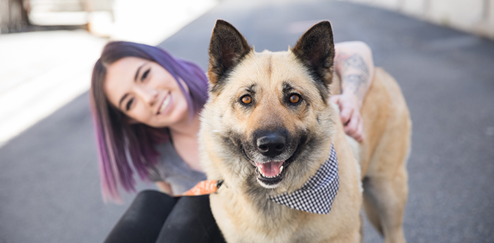 Smiling woman with lavender hair hugging a shepherd-type dog who is wearing a bandanna