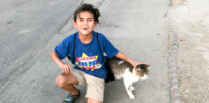 Young boy in blue shirt crouching next to calico cat