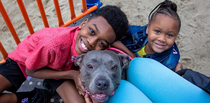 Boy in red shirt hugging gray pit bull type dog with girl in blue shirt to the right