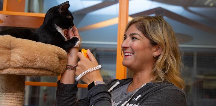 Women in dark gray sweatshirt petting black and white cat on cat tree