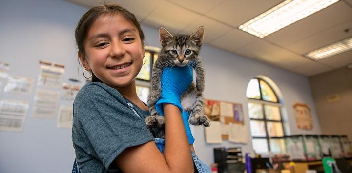 Young girl in dark gray shirt holding tabby kitten
