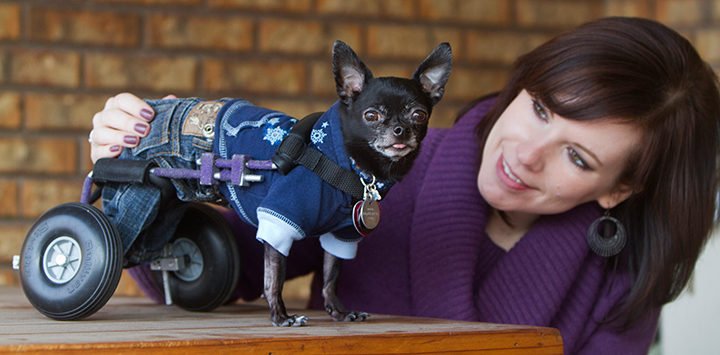Special and Snazzy: Photo tips for capturing fabulous photos of special-needs animals