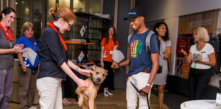 Tan dog with female volunteer and male adopter in blue shirt